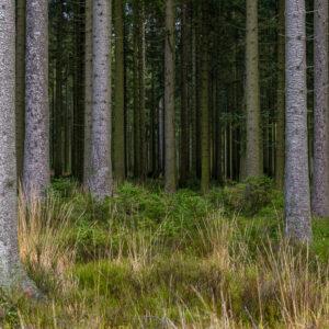 Landschapsfotografie Carovdb - fotografie