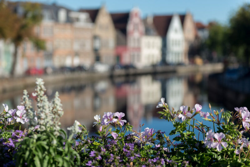 Brugge Carovdb - fotografie